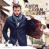 Couverture de l'album Amer Zayan 2015