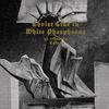 Cover of the album Christ Clad In White Phosphorus