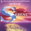 Couverture de l'album SERENE: Music for Spas