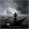 Couverture de l'album Dark Light of Dawn - EP