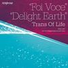 Couverture de l'album Foi Voce / Delight Earth - EP