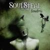 Cover of the album Tenebris
