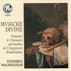 Couverture de l'album Musicke Divine (Psaumes et chansons spirituelles de l'Angleterre élisabethaine)