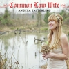 Couverture de l'album Common Law Wife