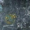Cover of the album Dark Shades of Blue