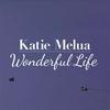Couverture du titre Wonderful Life 110