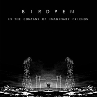 Cover of the track In the company of imaginary friends