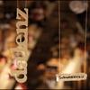 Couverture de l'album Schwoazweis