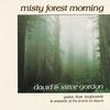 Couverture de l'album Misty Forest Morning