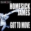 Cover of the album Got to Move