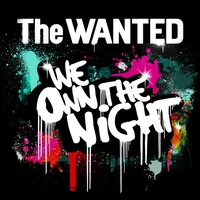 Cover of the track We Own the Night