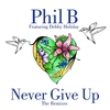 Cover of the album Never Give Up (The Remixes) [feat. Debby Holiday]