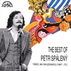 Cover of the album The Best Of Petr Spálený