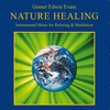 Cover of the album Nature Healing (Instrumental Music for Relaxing & Meditation)