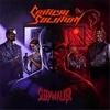 Couverture de l'album Sleepwalker