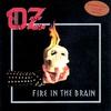 Couverture de l'album Fire in the Brain