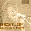 Cover of the album Best Of Dennis Brown