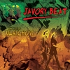 Cover of the album Javory Beat