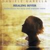 Couverture de l'album Healing River
