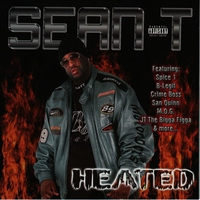Cover of the track Heated