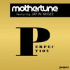 Cover of the album Perfection (feat. Jay W. McGee) - EP