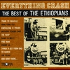 Couverture de l'album Everything Crash: The Best of the Ethiopians
