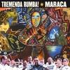 Couverture de l'album Tremenda Rumba!