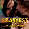 Cover of the album Daylight Fading - Single