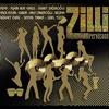 Couverture de l'album Zilli Perküsyon