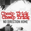 Cover of the track No Direction Home