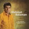 Cover of the album Sen İstemedin / Arguvana Gelemem