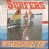 Cover of the track Windsurfin