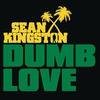Couverture du titre Dumb Love