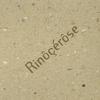 Cover of the album « rinôçérôse »