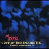 Couverture de l'album Cry Tuff Dub Encounter, Chapter 4