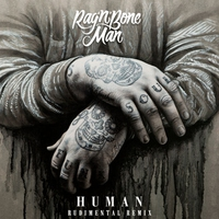 Cover of the track Human (Rudimental Remix) - Single