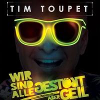 Cover of the track Wir sind alle gestört aber geil - Single