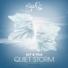 Cover of the album Quiet Storm