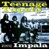 Couverture de l'album Teenage Tupelo (Original Score)