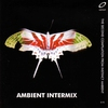 Couverture de l'album Ambient Intermix