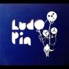 Cover of the album Ludo Pin