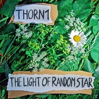 Cover of the track The Light of Random Star