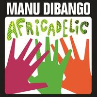 Couverture du titre Africadelic