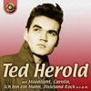 Cover of the album Ted Herold