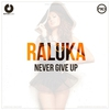 Cover of the album Never Give Up - Single