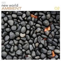 Couverture du titre New World Ambient, Volume 2