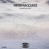 Couverture de l'album Winter Fun Sounds