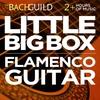 Couverture de l'album Little Big Box :: Flamenco