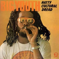 Cover of the track Natty Cultural Dread