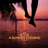 Couverture de l'album A Summer Evening, Vol. 02